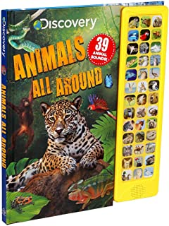 Discovery: Animals All Around