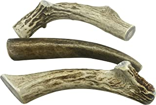 WhiteTail Naturals 3 Pack- Deer Antler Dog Chews Medium 5 to 6 Inches Long.