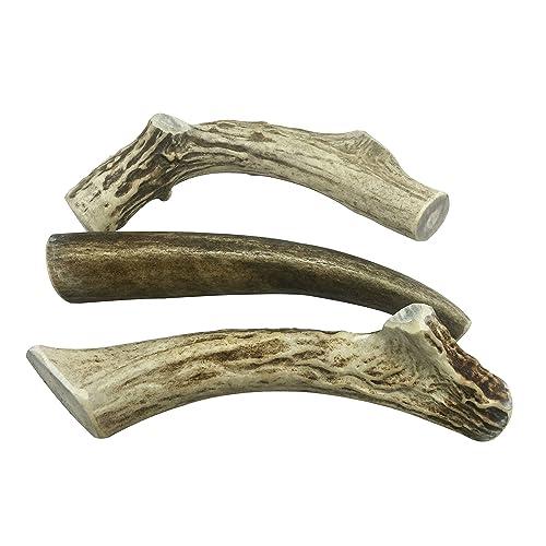 Deer Antlers: Amazon com