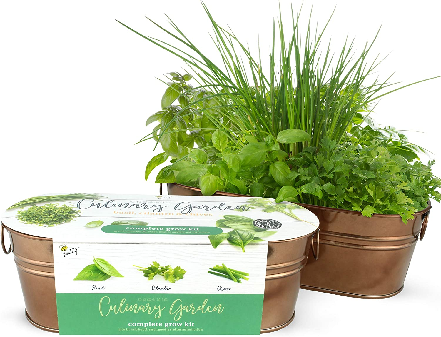 BUZZY Organic Windowsill Grow Kit   Copper Culinary Garden: Basil, Cilantro, and Chives   Best Gardening Gifts, Favors, Parties, Events, Unique, and Fun   Growth Guaranteed