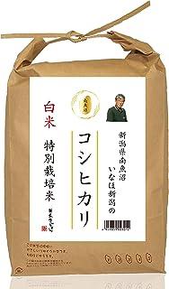 【精米】 新潟県南魚沼産 いなほ新潟のお米 白米 コシヒカリ 5kg 令和2年産