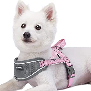 Blueberry Pet 8 Colors Soft & Comfortable 3M Reflective Strips Nylon Neoprene Padded Training Dog Harness