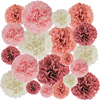 EpiqueOne 20-Piece Party Decoration Kit – Hanging Tissue Paper Pom Poms for Weddings and Other Special Occasions – Easy to...