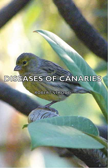 Diseases of Canaries (English Edition)