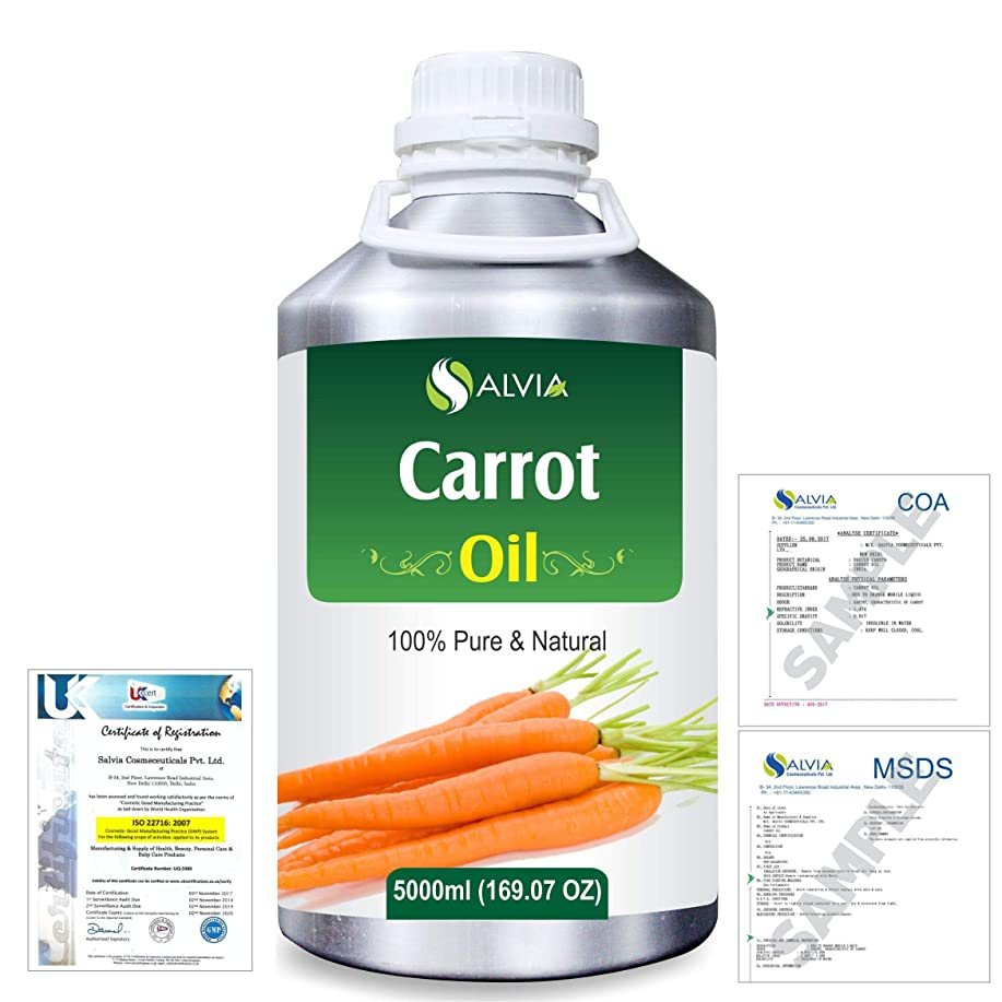 比率シーン調整Carrot Oil (Ducus Carotta) 100% Natural Pure Essential Oil 5000ml/169fl.oz.