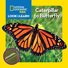 Best life cycle of monarch butterfly national geographic Reviews