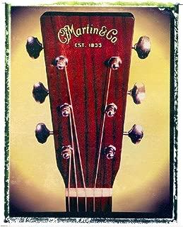 Martin Acoustic guitar art