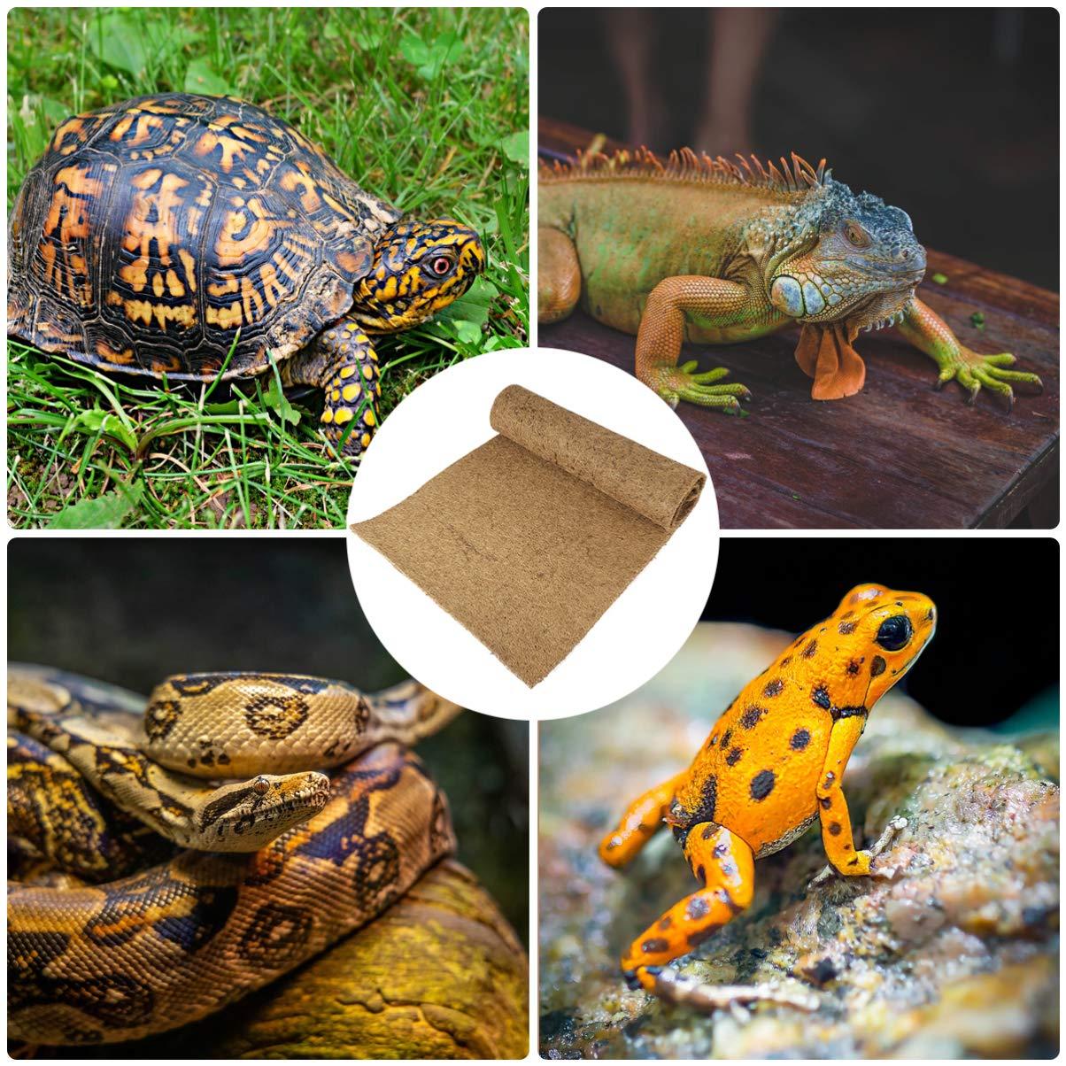 POPETPOP - Alfombra para reptiles (fibra de coco natural, 100 x 40 cm): Amazon.es: Productos para mascotas