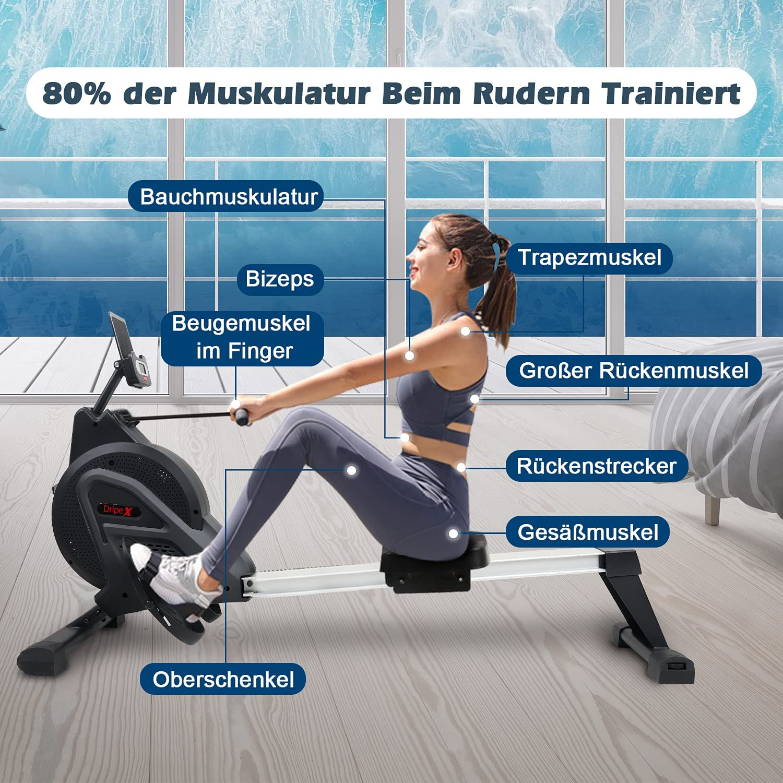 Dripex 2021 Rower Rudergerät beanspruchte Muskulatur