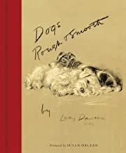 Dogs Rough and Smooth: Foreword by Susan Orlean