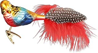 Inge-Glas Exotic Parrot, Clip-On Bird 10159S018 German Blown Glass Christmas Ornament