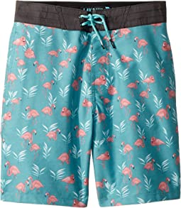 Flaminko Layday Boardshorts (Big Kids)