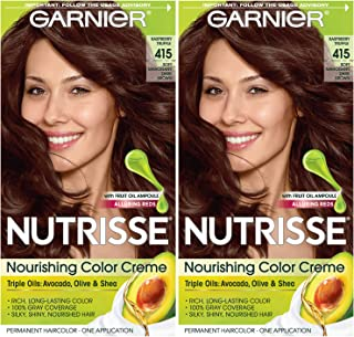 Garnier Hair Color Nutrisse Nourishing Creme, 413 Bronze Brown, 2 Count