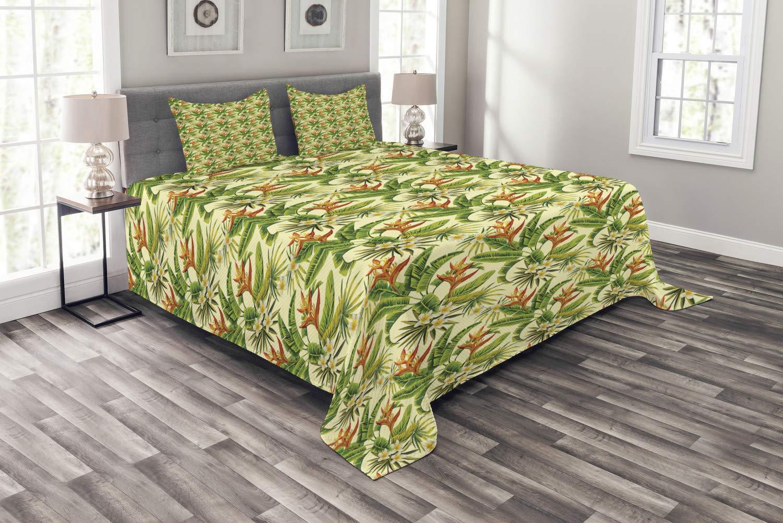 Frangipani Flower Aqua Print Details about  /Tropical Quilted Coverlet /& Pillow Shams Set