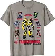 Transformer Multiple Robots in Disguise