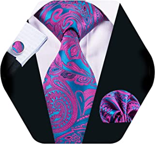Barry.Wang Men Paisley Tie Silk Tie Pocket Square Cufflinks Set Mens Necktie Set