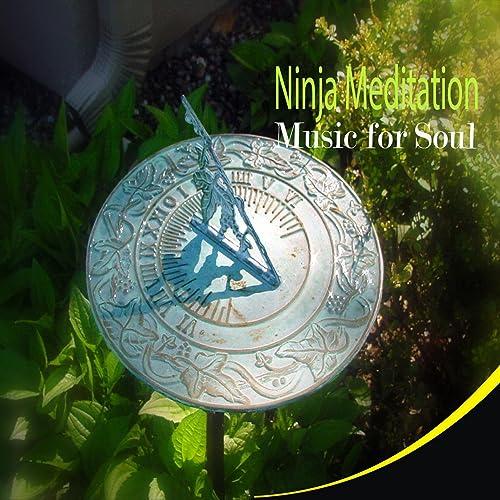 Ninja Meditation (Music for Soul) de Nikhil Halder en Amazon ...