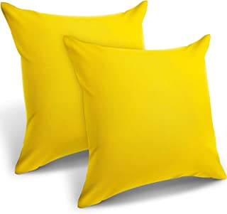 2 Pieces Decorative Outdoor Patio Balcony Waterproof Throw Pillow Covers, PU Coating Pillow Shell, Square Garden Cushion C...