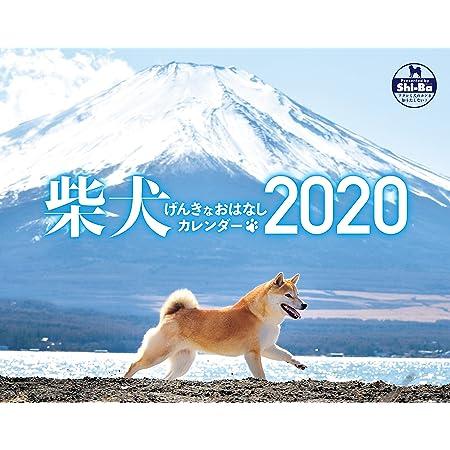2020カレンダー 柴犬げんきな おはなしカレンダー ([カレンダー])