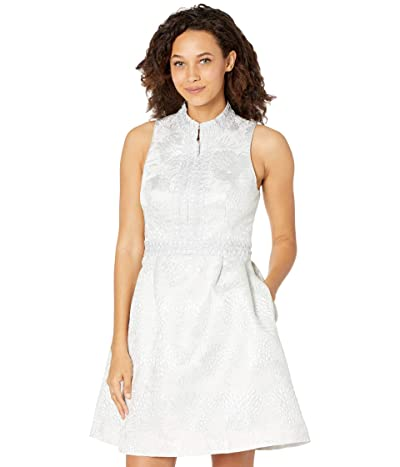 Lilly Pulitzer Franci Dress (Seaside Grey Full Bloom Brocade) Women