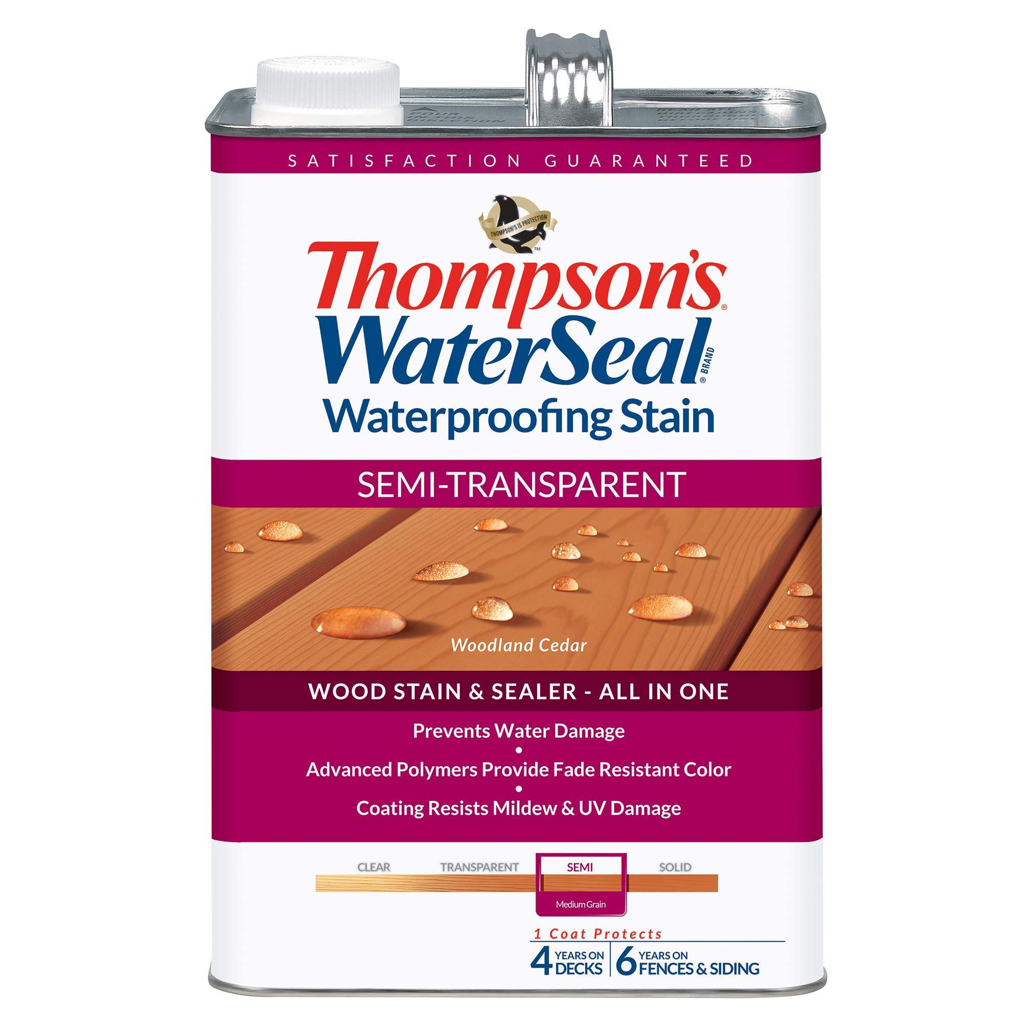 THOMPSONS WATERSEAL 042851 16 Transparent Medium