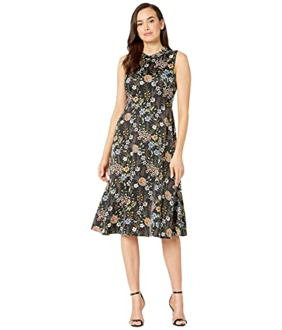 Maggy London Floral Botanical Fit and Flare Dress (Black/Multi) Women