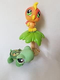 Hasbro Littlest Pet Shop Pet Pairs: Turtle & Toucan