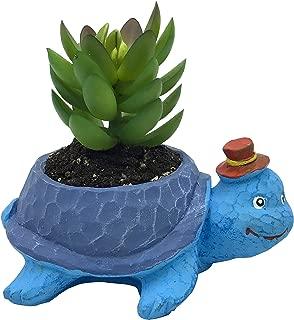 Cute Cartoon Animal Tortoise Shaped Cement Succulent Cactus Flower Pot(Plant Not Included)