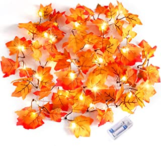 Severino Thanksgiving Decorations Lighted Fall Garland, Thankgiving Decor for Indoor Outdoor Home, Christmas Decorations P...