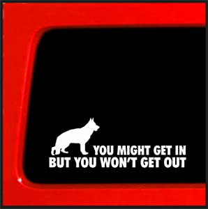 Sticker Connection | You Might Get in, But You Won't Get Out - German Shepherd Home Protection Sticker/Decal
