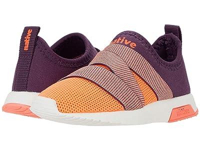 Native Kids Shoes Phoenix (Little Kid) (Cosmic Purple/Popstar Orange/Shell White/Popstar Orange) Kids Shoes