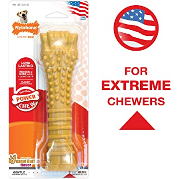 Nylabone Flavored Durable Dog Chew Toy