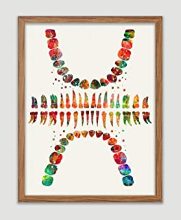 Tooth Chart Watercolor Poster Tooth Anatomical Art Print Dental Clinic Office Decor Medical Decor Dentistry Student Science Graduaiton Art Dentist Gift