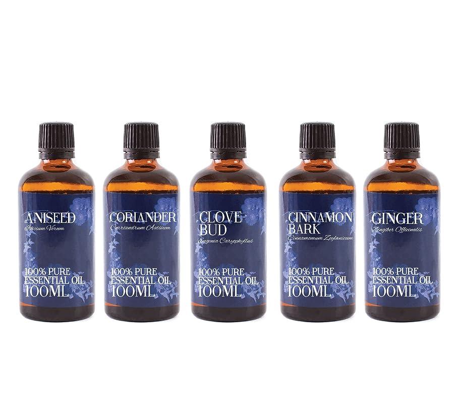 バッジ恐ろしいです農場Mystic Moments | Gift Starter Pack of 5 x 100ml Spice Essential Oils