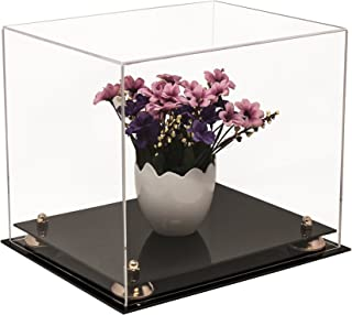 Better Display Cases Versatile Clear Acrylic Display Case - Medium Rectangle Box with Gold Risers 12.25