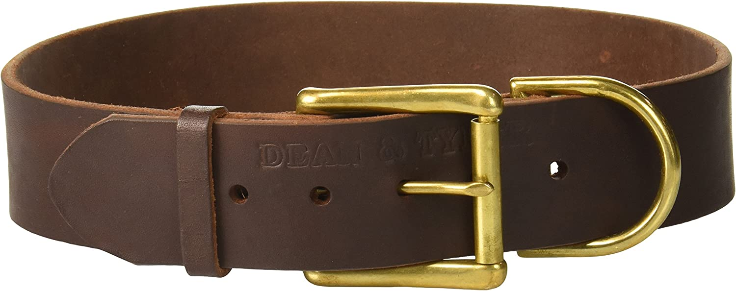 Dean and Tyler B and B , Basic Leather Dog Collar with Solid Brass Hardware  Brown  Size 30Inch by 13 4Inch  Fits Neck 28Inch to 32Inch