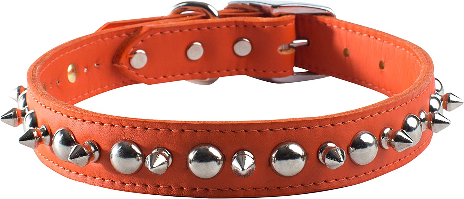 OmniPet 6081OR22 Signature Leather Pet Collar with Spike and Stud Ornaments, orange, 1 by 22