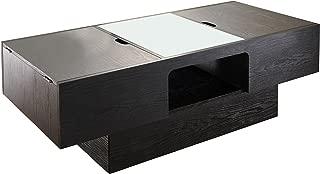 ioHOMES Lansing Rectangular Coffee Table with Storage, Black