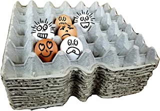 Egg Flats Egg Cartons Cheap Bulk - Egg Tray Egg Carton For Your Dubia Roach Colonies by G&T Country Living, LLC