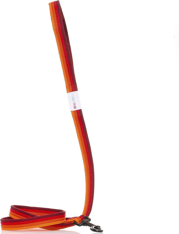 Real Simple Pet Dog Leash Rainbow (Medium, Red)