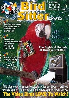 bird sitter video