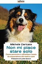 Permalink to Non mi piace stare solo: Come prevenire e affrontare l'ansia da separazione del nostro cane (GrandAngolo) PDF