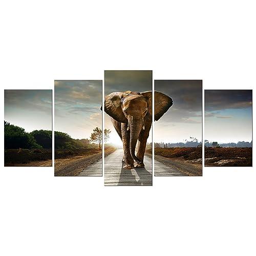 Elephant Wall Decor Amazoncom