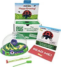 Insect Lore The World of Eric Carle Grouchy Ladybug Growing Kit, Green