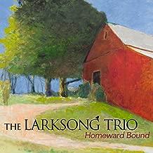 Best homeward bound irish folk song Reviews