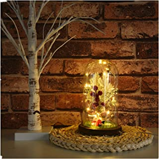 Christmas Micro Landscape Decorations Copper Wire LED Lights Christmas Home Decoration Transparent Glass Cover Decor Holiday Gift (Micro Landscape, Santa Claus)