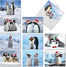 Penguins and Greetings' Christmas Cards, Cute Penguin Family Holiday Cards 4 x 5.12 inch, 10 Winter Seasonal Birds Holiday Notes, Fun Penguin Seasons Greetings Cards M2951XSG