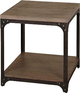 The Mezzanine Shoppe Scholar Mid Century 1 Shelf Living Room End Table with Metal Frame, 21.5