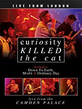 Curiosity Killed The Cat - Live From London