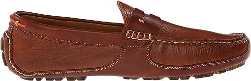 Saddle Tan American Bison
